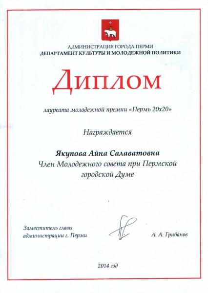 Пермь 20х20